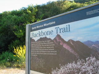 Backbone Trail, Santa Monica Mountains. [Photo Credit: LAtourist.com]