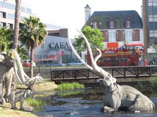 Starline Tours double-decker tour bus passing La Brea Tar Pits and CAFAM. [Photo Credit: LAtourist.com]
