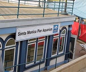 Santa Monica Pier Aquarium. [Photo Credit: LAtourist.com]