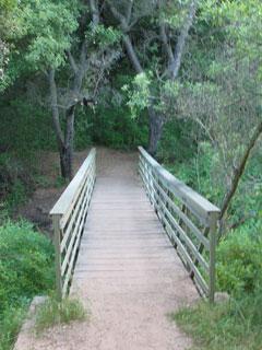 Bridge at Newton Canyon Trail, Santa Monica Mountains. [Photo Credit: LAtourist.com]